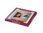 Art Vinyl Play & Display Individual Frame